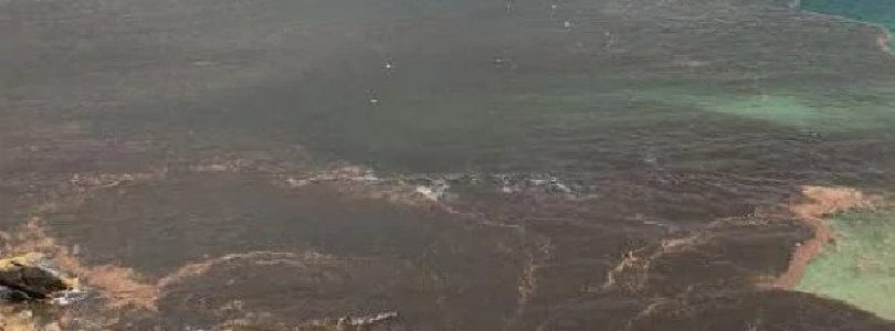 Sydney's Northern Beaches Overvalued and Polluted